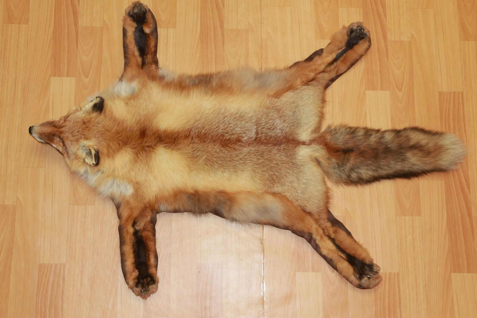 Siberian Red Fox Taxidermy Rug Carpet For Sale Fur